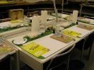 Workshop 2011